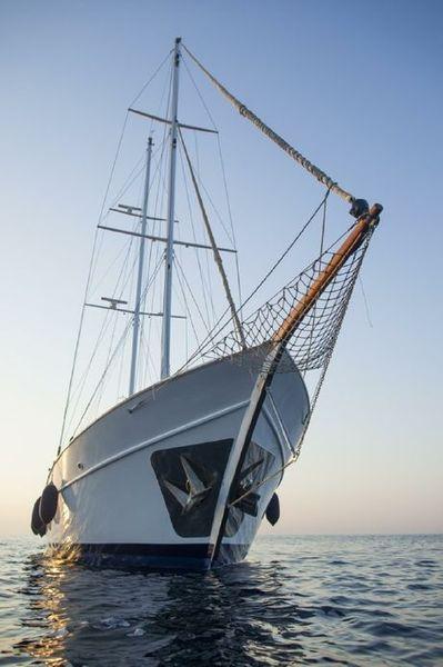 Custom Made  Schooner Motor Sailboat Odysseus A.  17