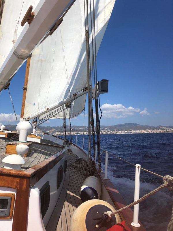 Metur Yachts Bombigher Dream 55 Louise 8